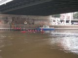 Blaue Band der Weser 2013