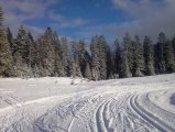 Skilanglauf Kössen